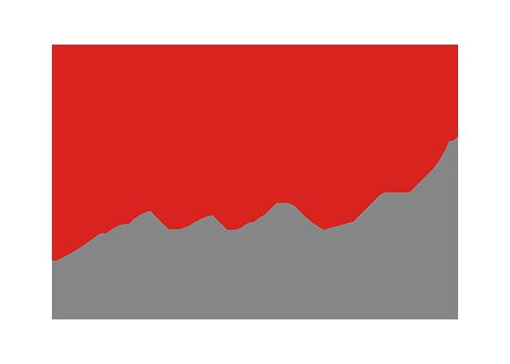 モリチロゴ